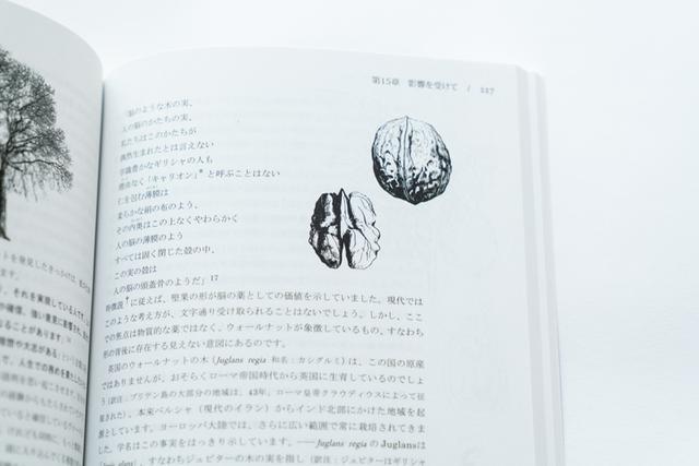画像: 「バッチ博士によると、ウォールナットは前進する段階。乳歯の生えるときや思春期、移住や転職など、人生の変化、大きな決断をくだす助けとなるレメディです」写真は、谷口さんが翻訳をした書籍『バッチのフラワーレメディー 植物のかたちとはたらき』の中の、ウォールナットの解説ページ