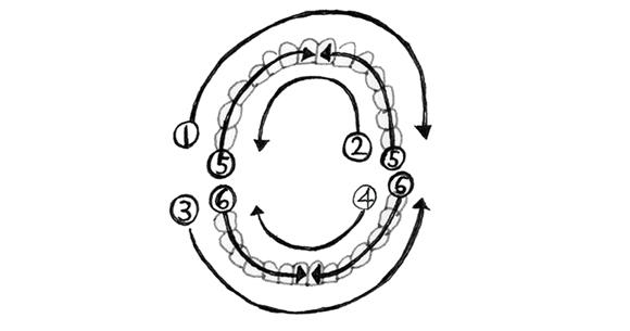 画像5: 歯ブラシを使う際のポイント