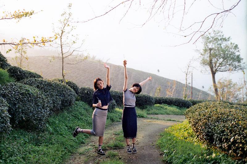 画像4: お茶のCM撮影のロケ地にもなった竹山の「八卦茶園(はっけちゃえん)」