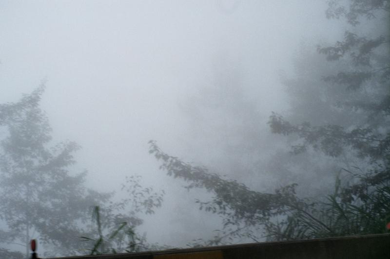 画像4: 「杉林溪(すぎばやしけい)」で、湖遊びと森林浴!