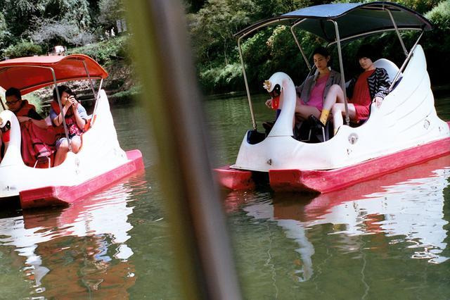 画像6: 「杉林溪(すぎばやしけい)」で、湖遊びと森林浴!