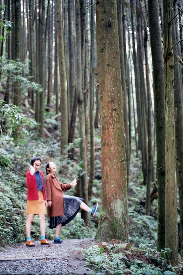 画像2: 「杉林溪(すぎばやしけい)」で、湖遊びと森林浴!