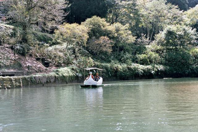 画像5: 「杉林溪(すぎばやしけい)」で、湖遊びと森林浴!