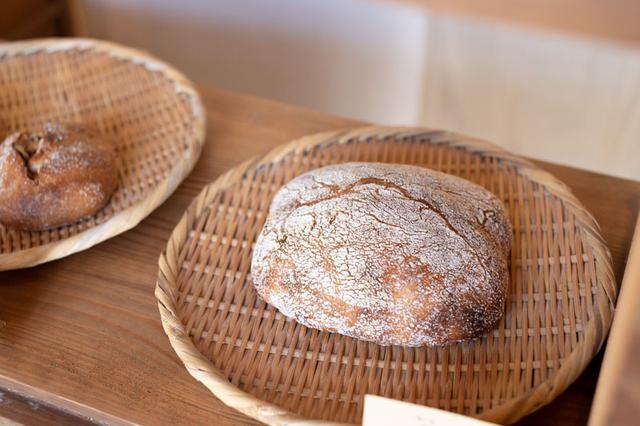 画像: 皮の旨味が強く、皮好きにおすすめの「角パン」。横で2等分して具を挟み、サンドイッチにしてもおいしいそう