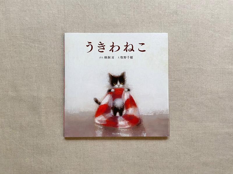 画像: 子猫らしい、ぽっこりしたおなか。まん丸の瞳は、好奇心でいっぱいです。