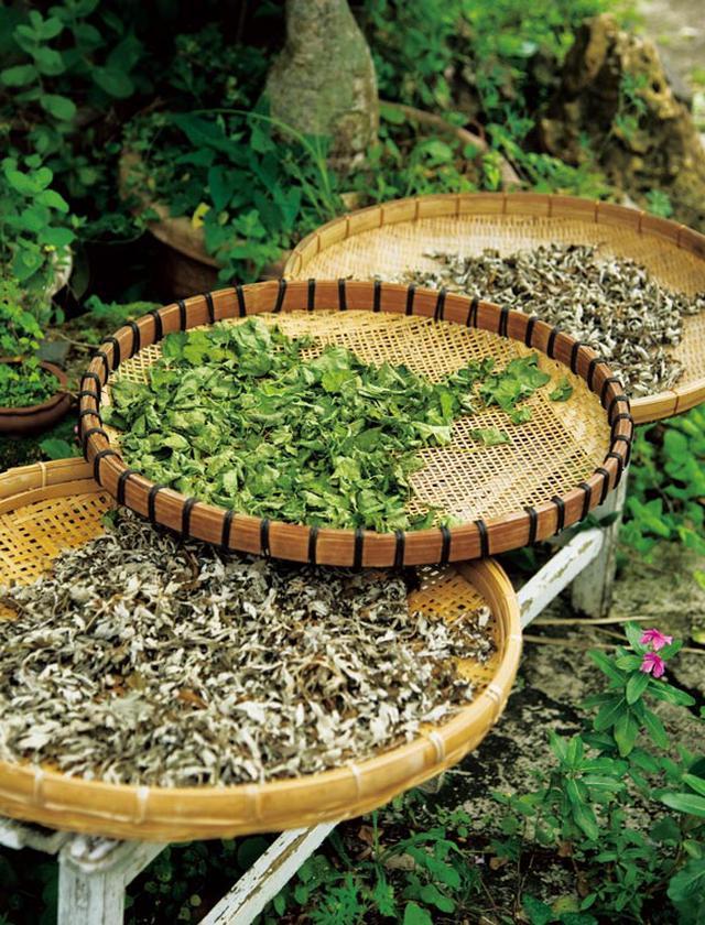 画像: 薬効のある草は、お茶にするため天日干しに。軒先のざるに並んでいたのはヨモギ、タンポポ、ツボクサの葉