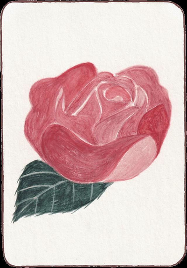 画像: バラ カードメッセージ