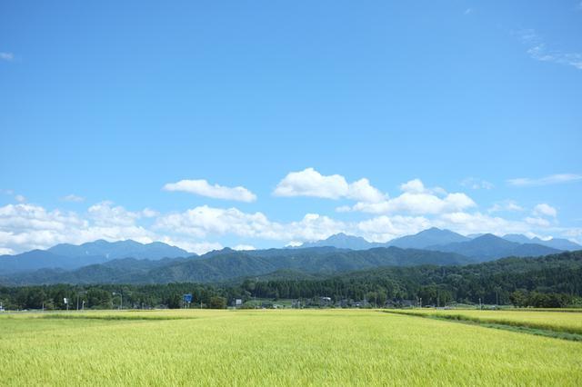 画像: 北アルプスの麓に広がる田園風景