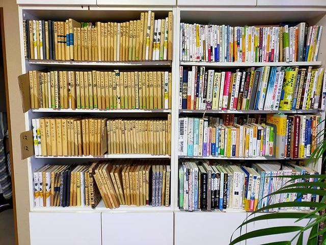 画像: 左がコミックス、右が単行本等の棚。段ボールで見出しをつくり、前後2列に本が入れてあります。1セット複数巻にわたるコミックスにはカバーをかけ、表紙側と背表紙側にタイトルを書いてあります。単行本は探しやすいようにそのまま。