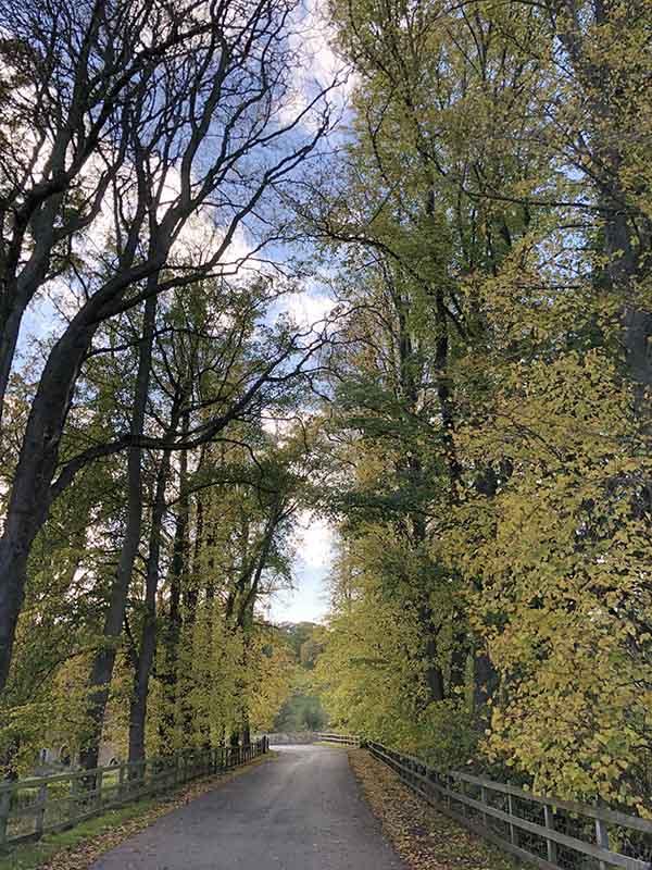 画像: 元王室の邸宅、コーンブリーエステイトに続く道