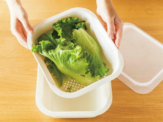 画像: 葉もの野菜は洗ってふた付きのバットに