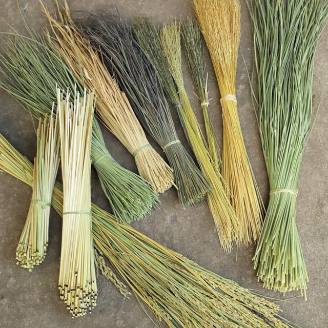 画像: 色合いも長さも、さまざまな藁。種類別、穂先や芯など部位別にして使う