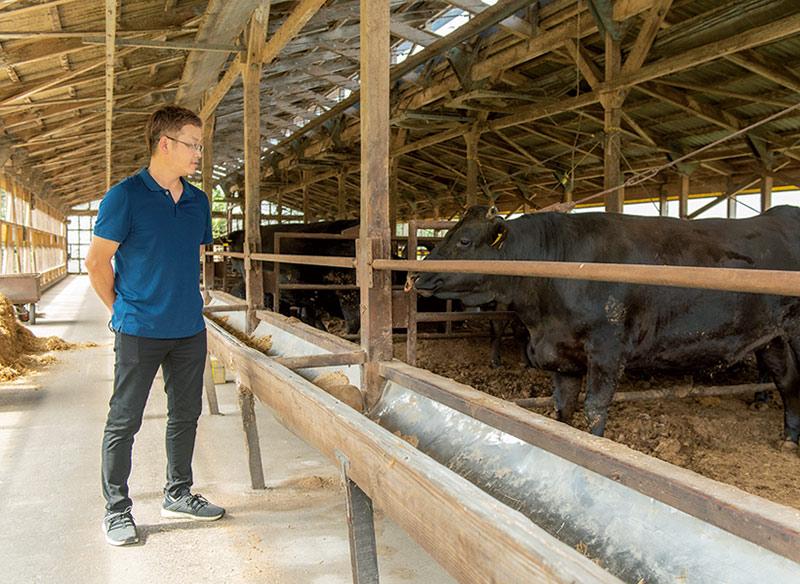 画像2: 東伯(とうはく)和牛