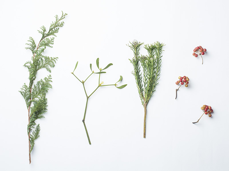 画像:  花材 