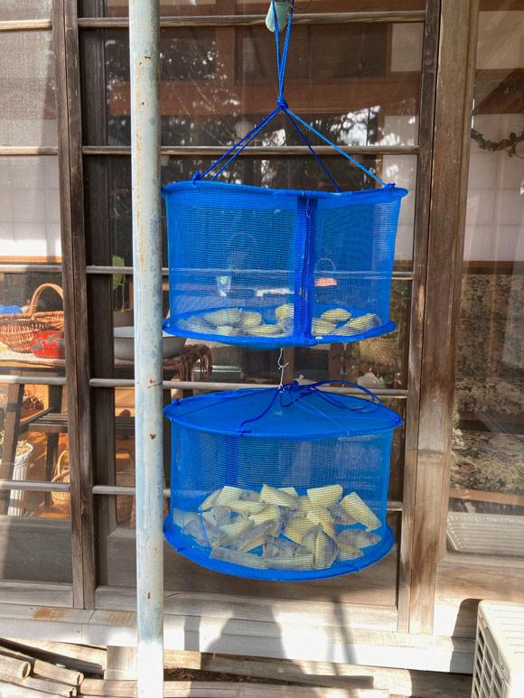 画像: 蒸したお芋で干し芋に挑戦