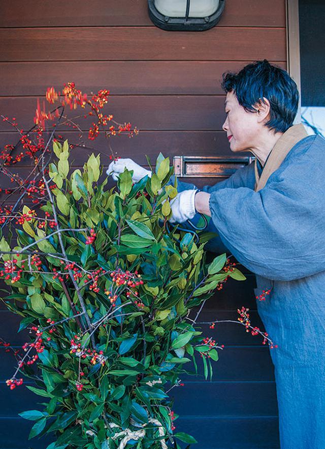 画像: 剪定したローリエにツルウメモドキを絡ませる。お正月を迎える準備のひとつ