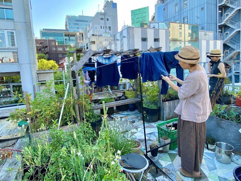 画像1: 都会は種を育み、飛ばす場所