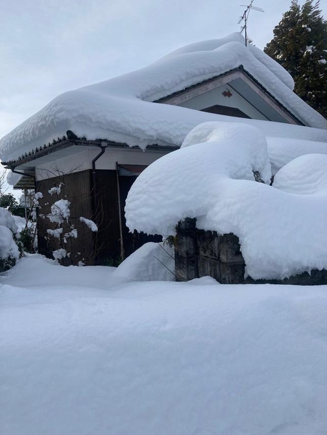 画像: 35年ぶりの大雪ですっかり埋もれました。