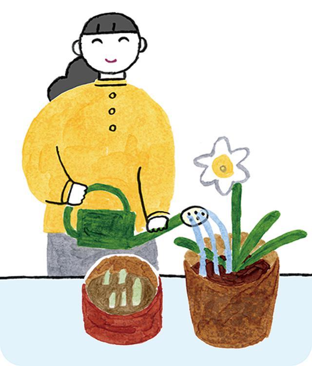 画像: 正しい春の毒出し、デトックス
