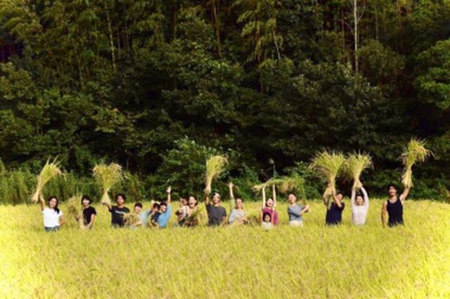 画像1: ブラウンズフィールドの自給自足からうまれたランチコース | アラサー女子のまるごとケア