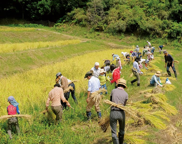 画像: 「無印良品 鴨川里山トラスト」では、田植えや稲刈りなどの農業体験イベントも実施。手や体を動かす「感じ良い暮らし」への取り組みのひとつ