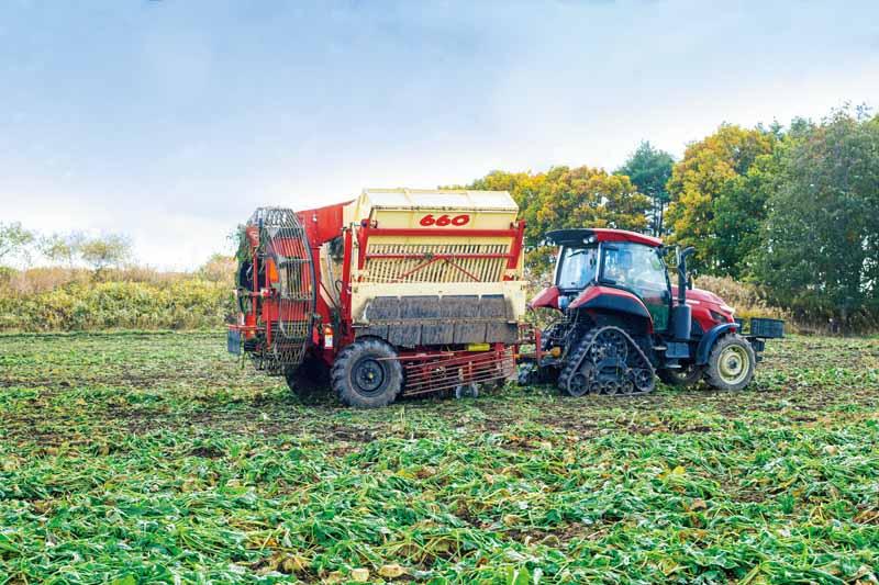 画像: 葉は翌年の作物の養分に、循環するてん菜の畑づくり