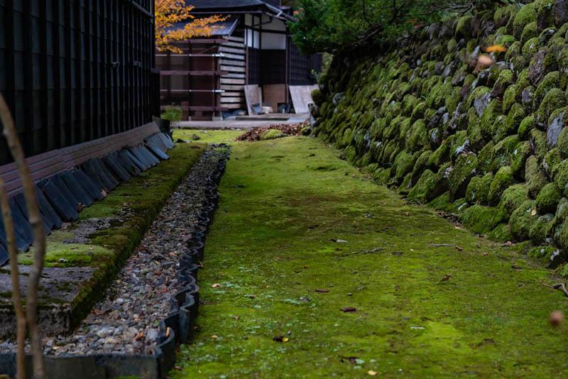 画像: 地面も石垣もこけで緑に染まっていました