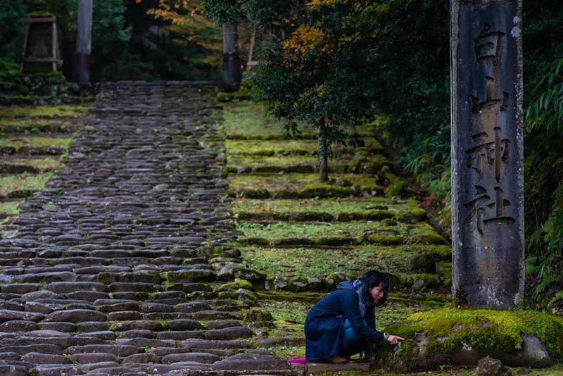 画像: 平泉寺白山神社の入り口