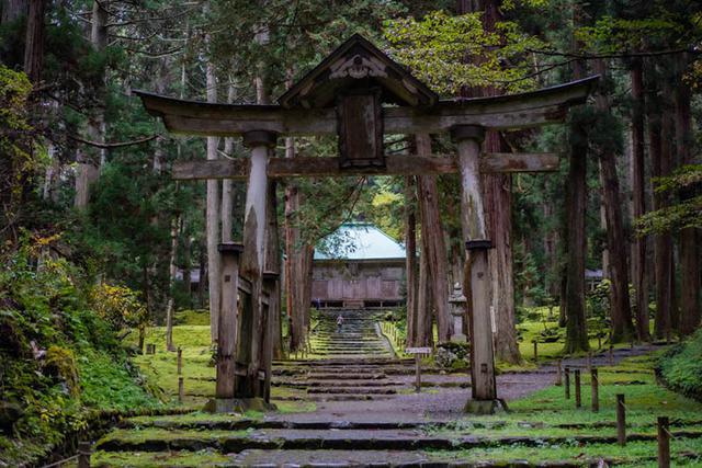 画像: 二の鳥居ごしに見た平泉寺白山神社の拝殿