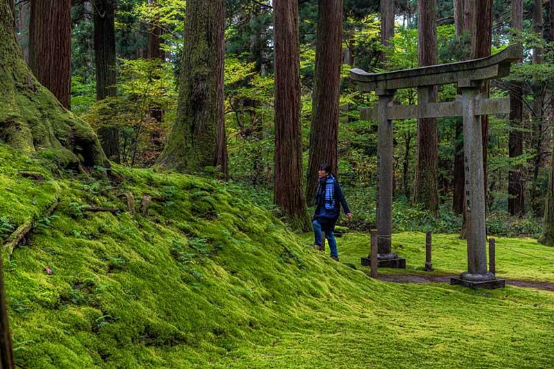 画像: 平泉寺を開山した泰澄がまつられている開山社にもお参りしました