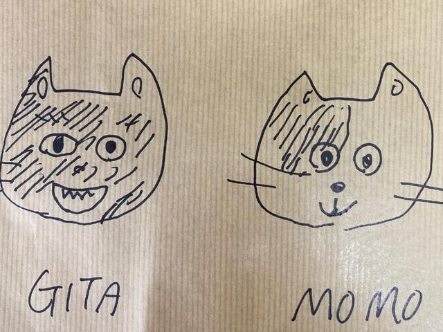 画像2: 猫ちゃんと暮らす