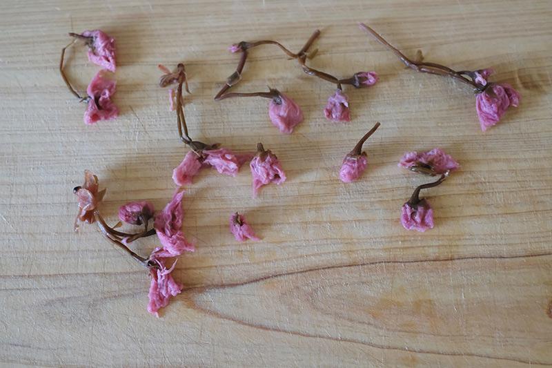画像: 桜を塩抜きして水を切る