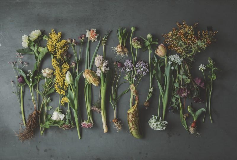 画像: 春ならではの、生命力を感じながら