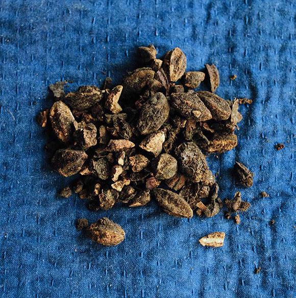 画像: リビングブルー(藍染めを手掛けることで有名になったソーシャルベンチャー)で使われている天然染めの原料。写真はミロバランの実