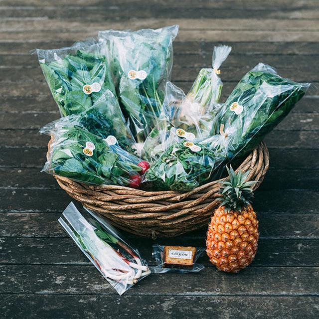 画像: 小堀さんが選んだ旬の野菜や加工品が届くサービス「ベジバルーン」のセット