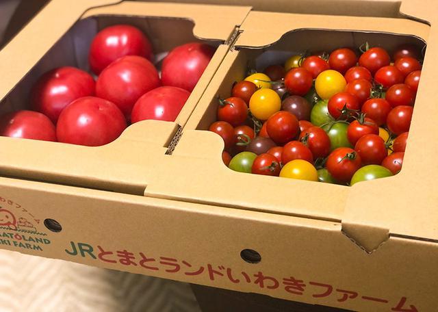 画像: 「いわきトマトランド」のお取り寄せトマト
