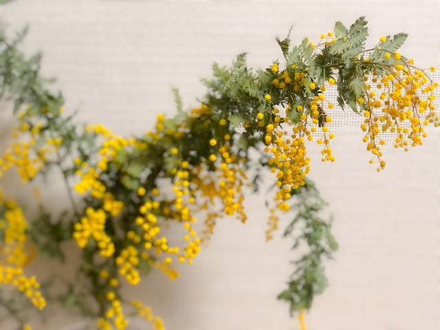 画像2: 春に花を愛でる