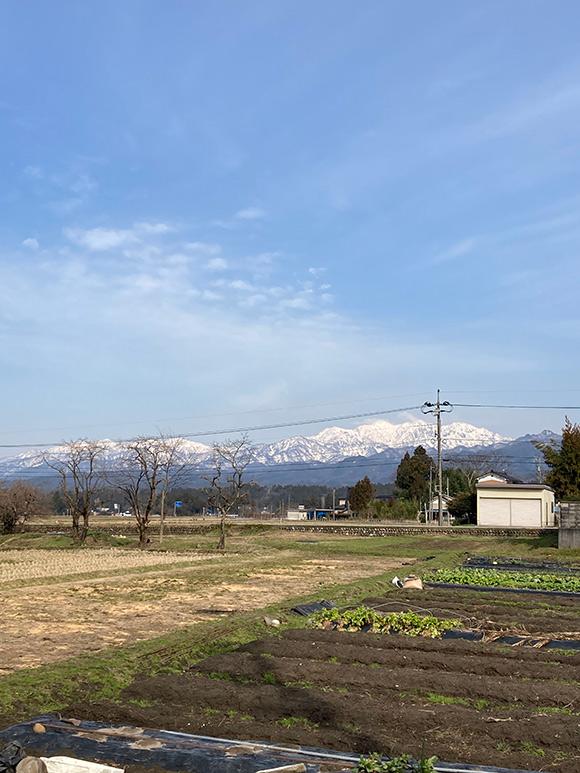 画像: 周りの畑の準備も始まりました。