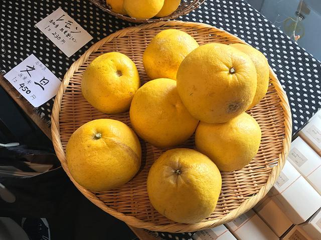 画像: 高知の文旦など、無農薬栽培の果物と出会えることも。