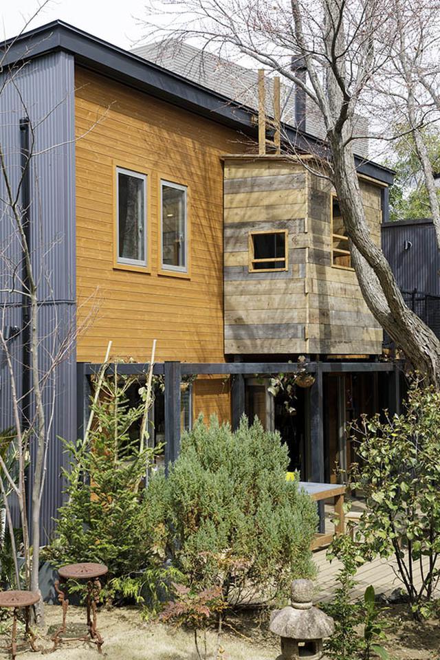 画像: 柳沢さんが思わず「この家で育ちたい!」と声を上げた「ワンダーデバイス」。楽しい仕掛けがいっぱいです