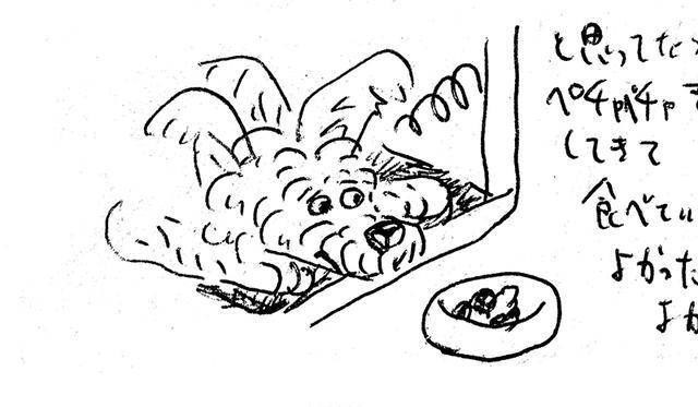 画像: 我々が同じ部屋にいると目の前のご飯も食べれない(オカタオカさん日記より)