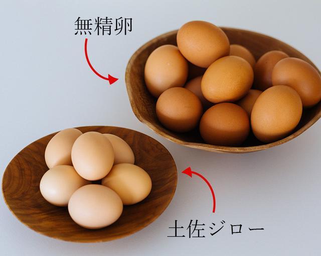 画像: 春の卵は美味