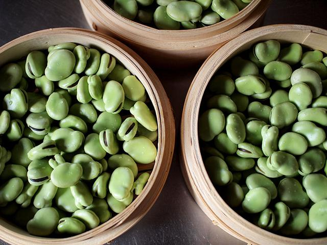 画像: 夫の両親からもらった元気いっぱいのそら豆