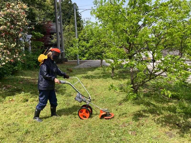 画像: ついに草刈り機を導入