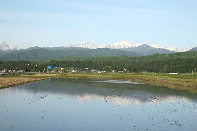 画像: 田に映るアルプス