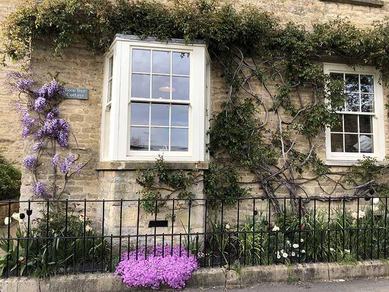 画像: バラやフジが見事にツタを伸ばしている前庭