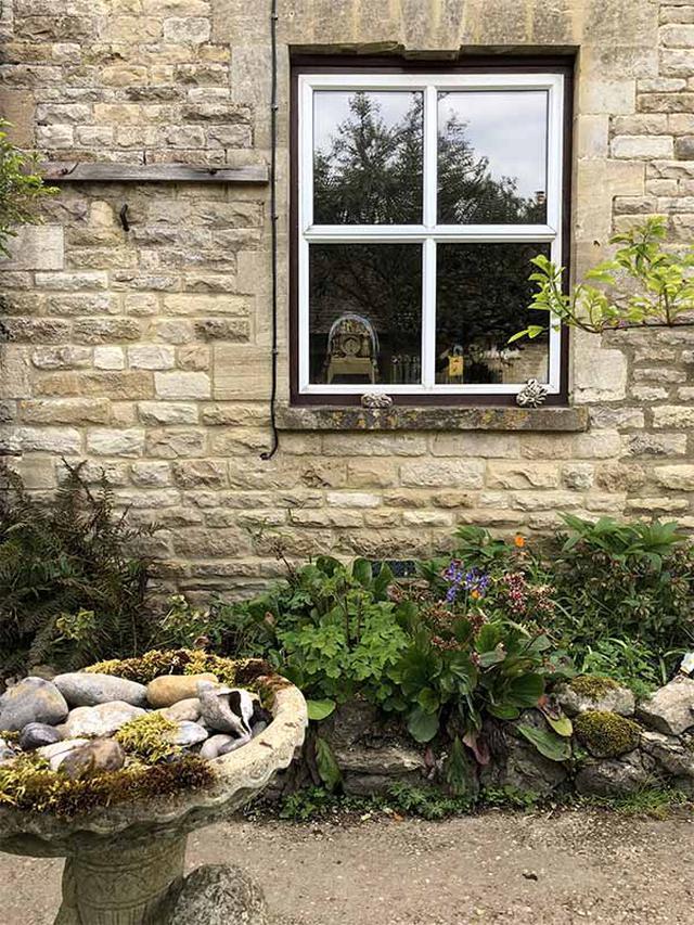 画像: デイビスさんの家の窓と鳥の水飲み場