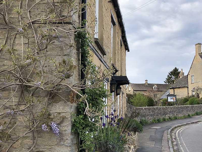 画像: 私が暮らす村、チャールブリーで見かけた素敵な前庭です。かわいい草花が植えられ、横面にはフジがツタを伸ばしています