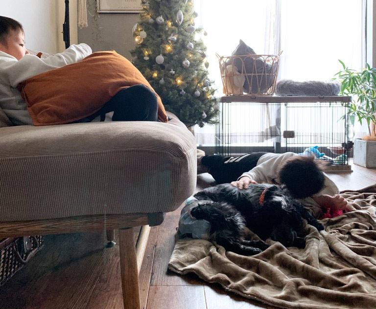 画像: 洗える毛布で過ごした冬