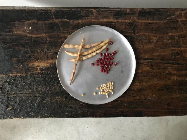 画像: 葵さんが育てた、小豆と白小豆。尊い美しさ